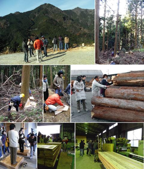 「豊田の家」徳島杉の伐採ツアーに参加しました